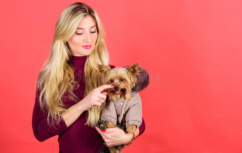 Make sure dog feel comfortable in clothes. Apparel and accessories. Dressing dog for cold weather. Which dog breeds. Should wear coats. Girl hug little dog in stock photos