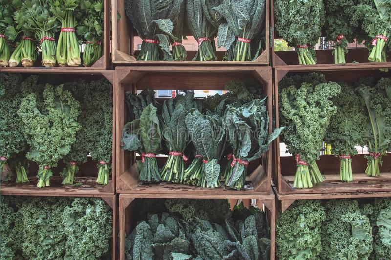 Make sure to eat your greens. Boxes of fresh green kale at the farmers market, ready for salads and healthy meals stock photography