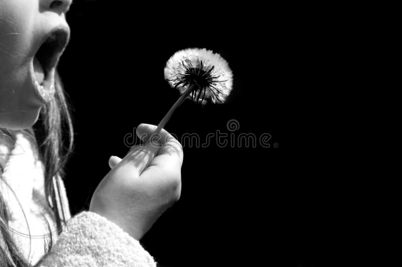 Download Make a Wish stock image. Image of child, youth, innocence - 2449165