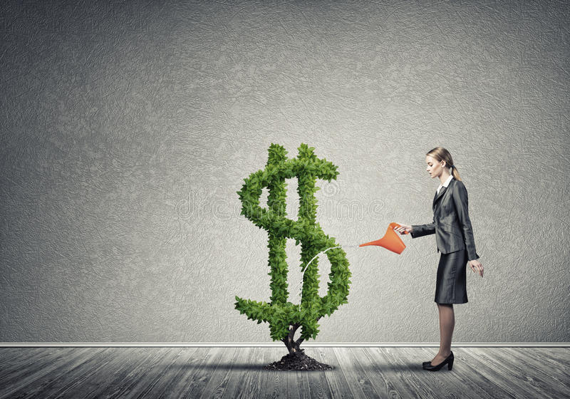 Make your money grow. Young attractive businesswoman watering plant in ground with can royalty free stock photography