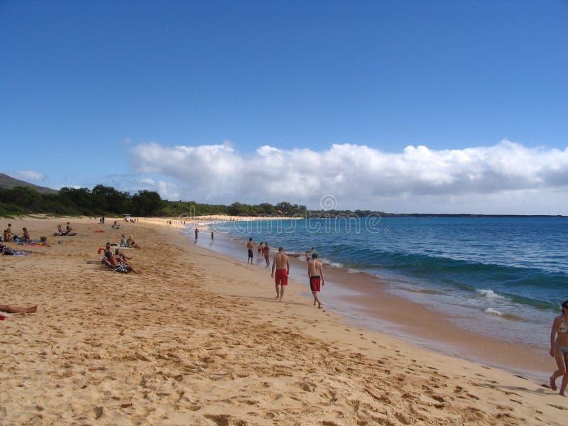 Download Makena Beach/Big Beach stock photo. Image of oneloa, beaches - 724744