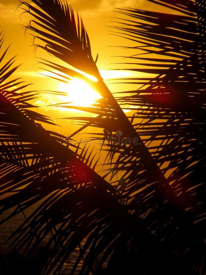 Makena Beach Sunset royaltyfria bilder