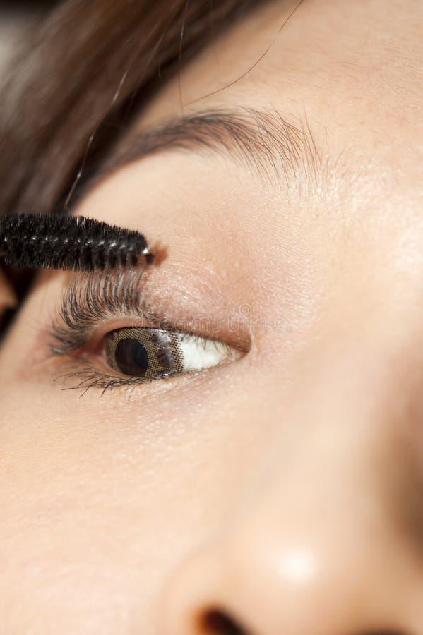 Download Makeup stock image. Image of beautify, closeup, beautifying - 9701759