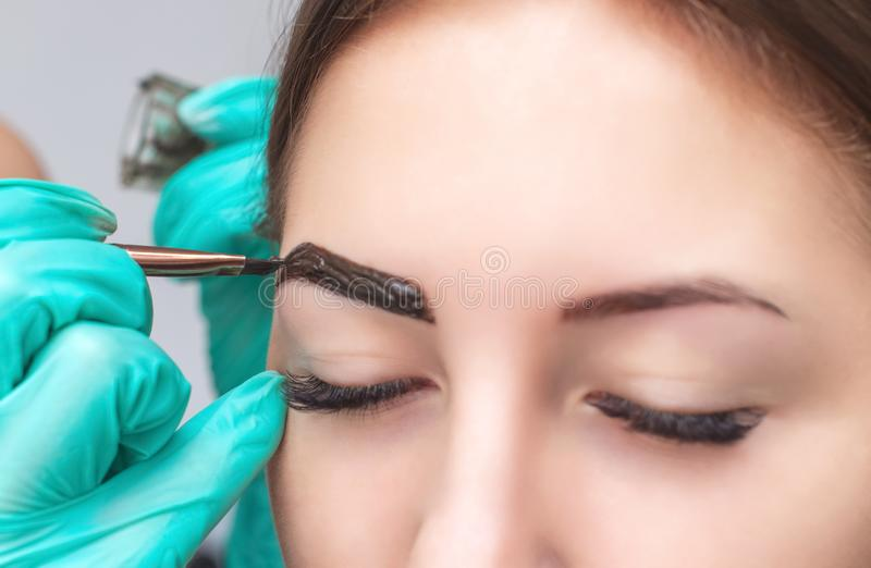 Makeup artysta stosuje farby hennę na brwiach w piękno salonie zdjęcie royalty free