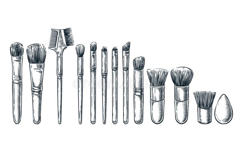 Makeup brushes sketch illustration. Female cosmetics design elements. Hand drawn isolated beauty tools.  vector illustration