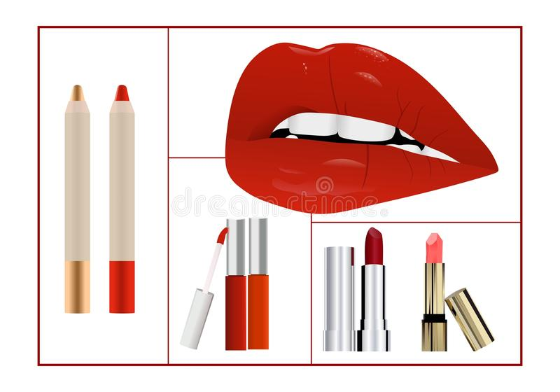 Makeup collage, cdr vector royalty free stock photos