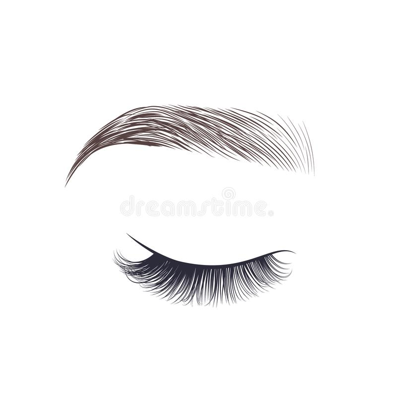 Makeup eyebrows. Closed eyes with long eyelashes. royalty free illustration