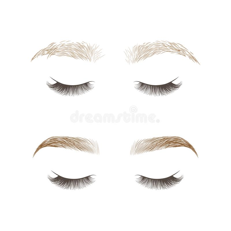 Makeup eyebrows. Set of well-groomed and shaggy eyebrows. royalty free illustration