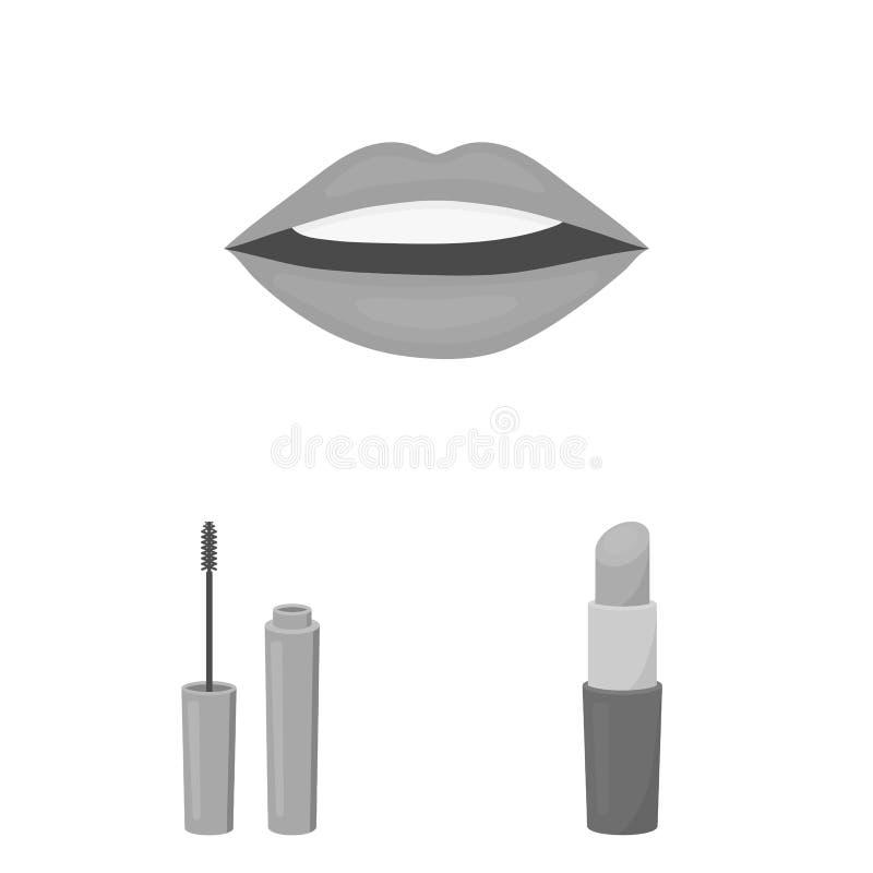 Makeup och monokromma symboler för skönhetsmedel i uppsättningsamlingen för design Makeup och rengöringsduk för materiel för utru royaltyfri illustrationer