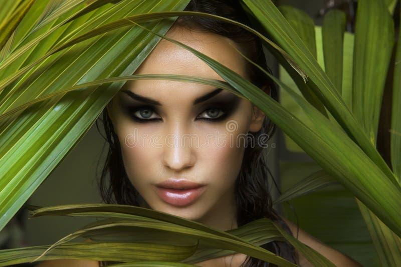 makeup Sexigt härligt kvinnanederlag bak palmbladen _ royaltyfri foto