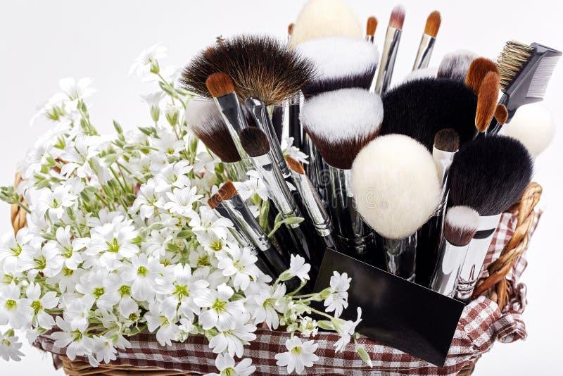 Makeupborsteuppsättning i lathund med blommor chickweed Vit backgr royaltyfri fotografi