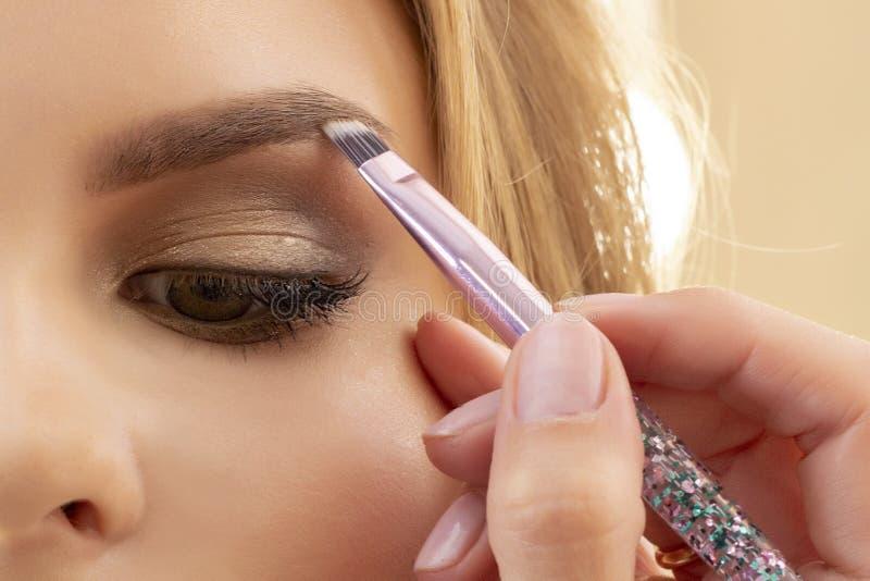 Makeupkonstnären sätter makeup på flickamodell Borsta för att applicera ögonskugga till ögonbryn härlig flickamodell, stående Näc arkivfoto