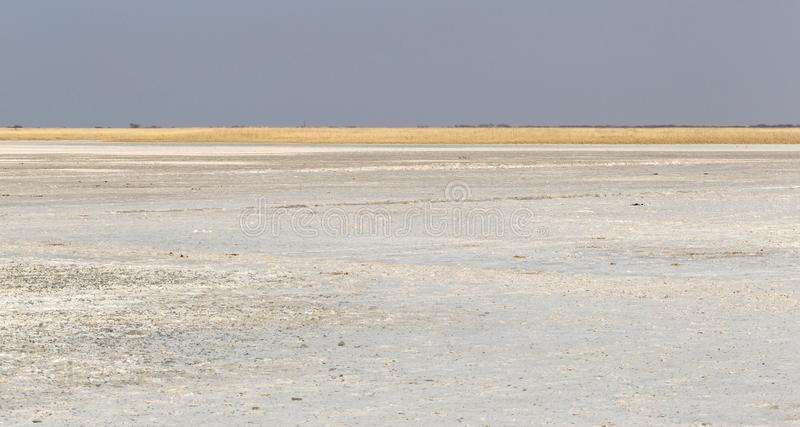 Makgadikgadi filtra il paesaggio espansivo del parco nazionale fotografia stock libera da diritti