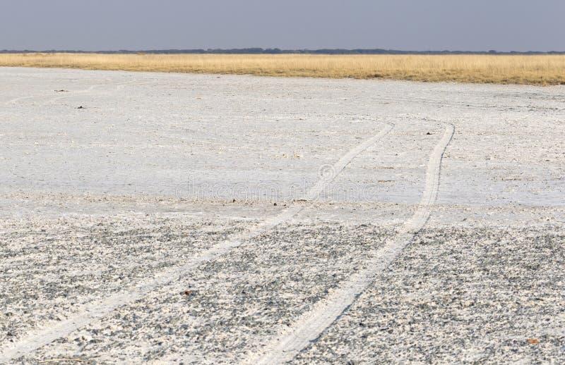Makgadikgadi filtra il paesaggio espansivo del parco nazionale immagini stock libere da diritti