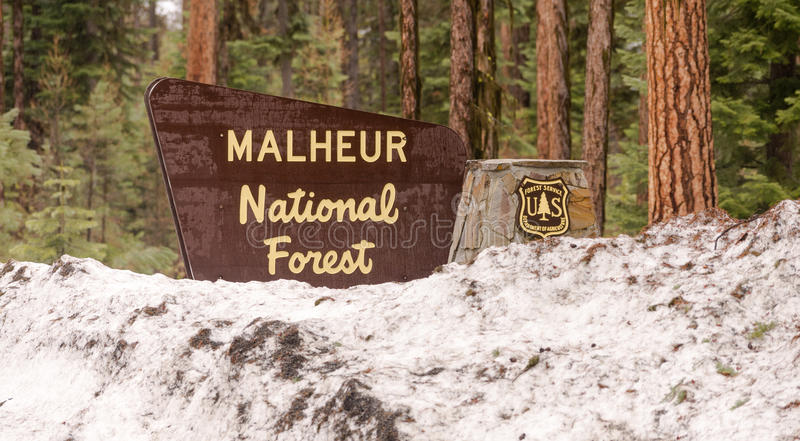 Makheaur National Forest Entrance Sign Oregon Wilderness. Department of Agriculture sign marking entrance to federally protected lands stock image
