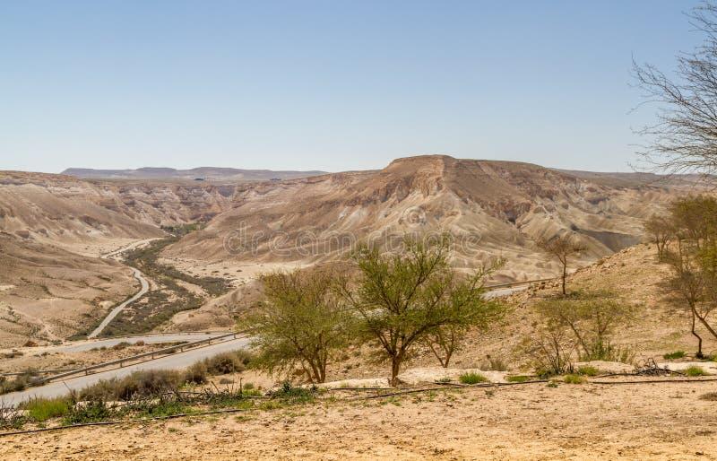 Makhtesh Ramon in Negev-woestijn, Israël stock afbeeldingen