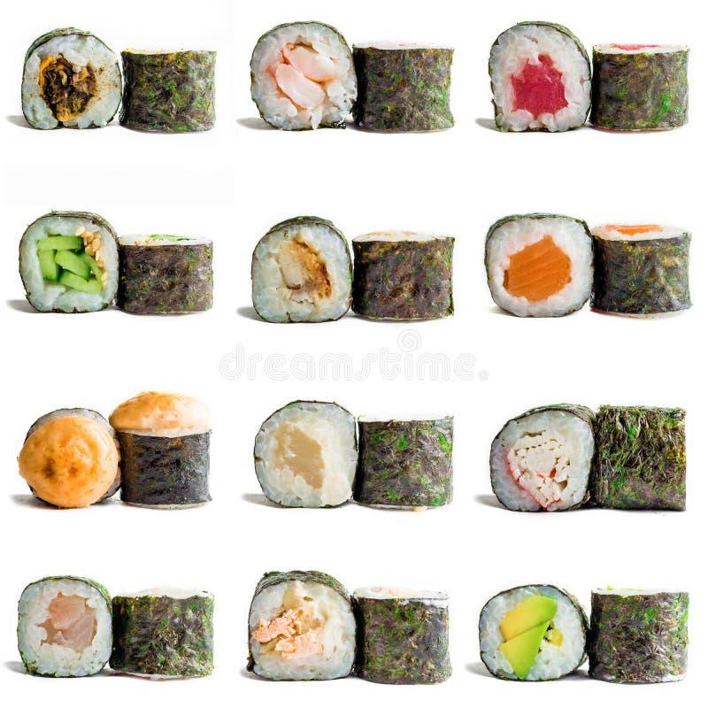 Maki do sushi isolado no fundo branco para o menu Alimento japonês tradicional foto de stock royalty free