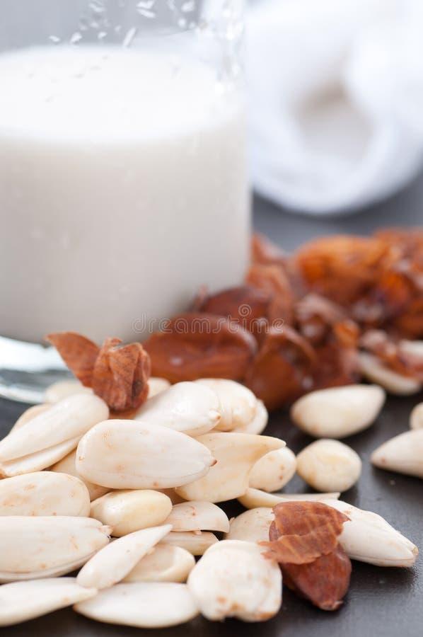 Making Almond Milk royalty free stock photography