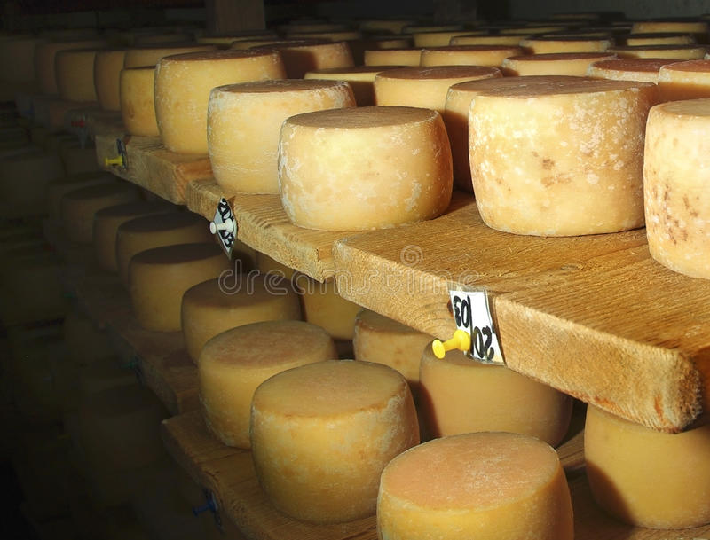 Making cheese stock photography