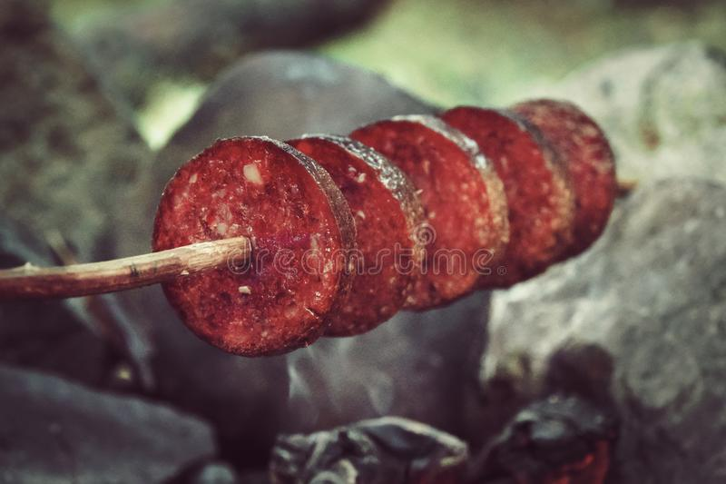 Making and cooking Hot dog smoked sausages over open camp fire. Grilling food over flames of bonfire on wooden branch - stick spea royalty free stock photo