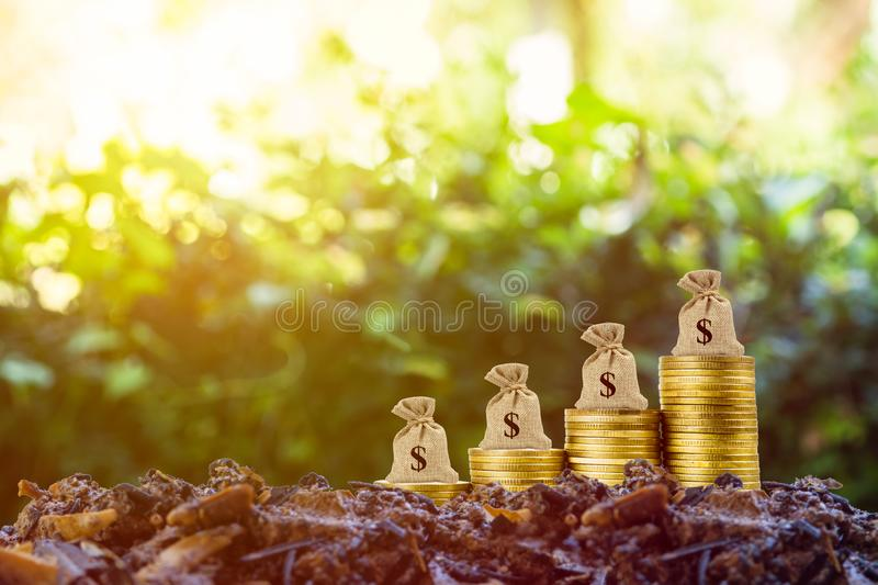 Making money and money investment concept. A money bag on rise up stack of coins on good soil and nature background with sun light stock photos