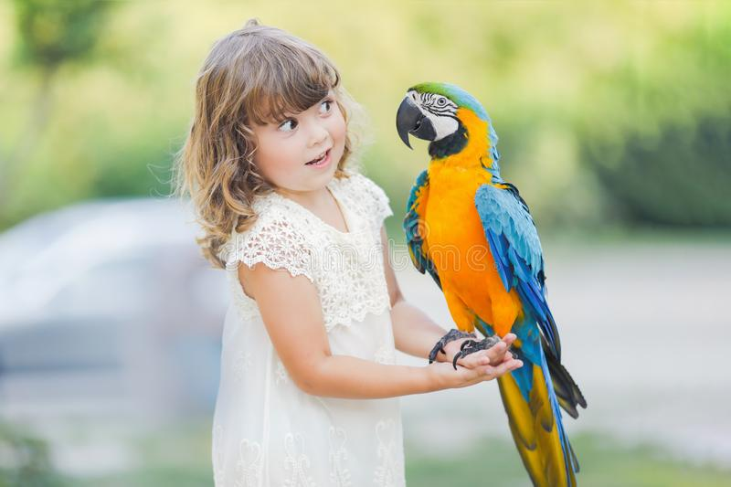 Making photo of exotic animals. Little girl with macaw parrot stock image