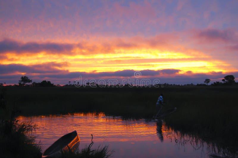 Makoro στο ηλιοβασίλεμα - δέλτα Okavango - Μποτσουάνα στοκ φωτογραφία