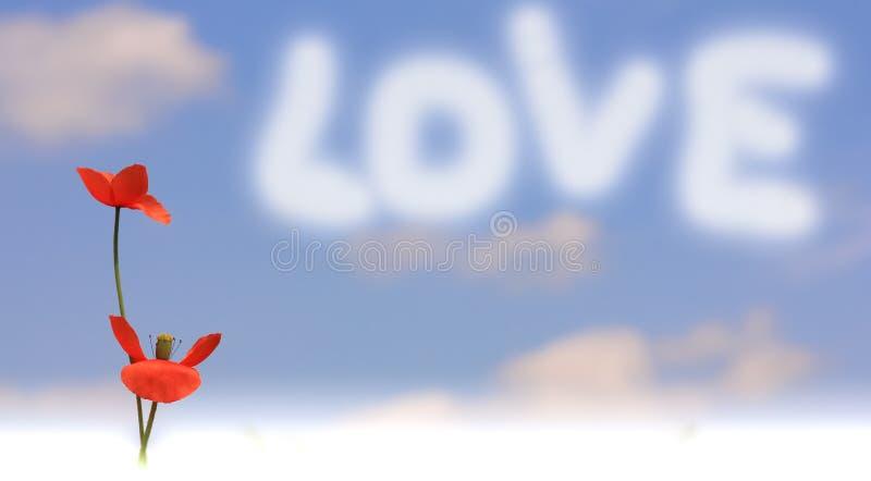Makowa wiadomość z miłością fotografia stock
