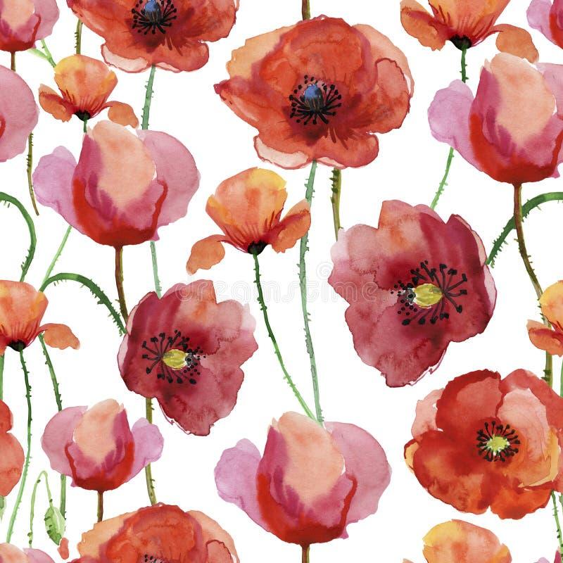 Makowi kwiaty, watercolour ilustracja royalty ilustracja