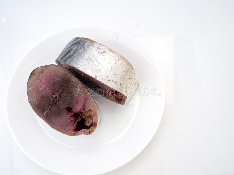Makreelvissen ( saba fish) op witte achtergrond royalty-vrije stock afbeelding