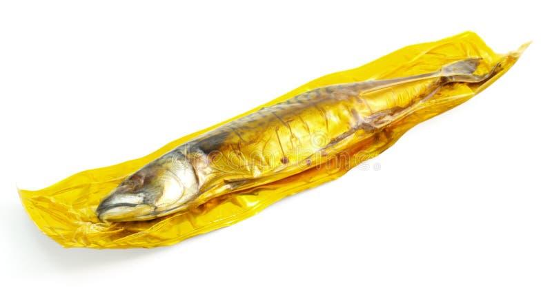 makrela dymiąca bańka obraz stock