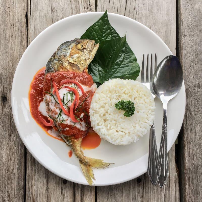 Makrela w wysuszonym czerwonym currym z gotowanymi ryż obraz stock