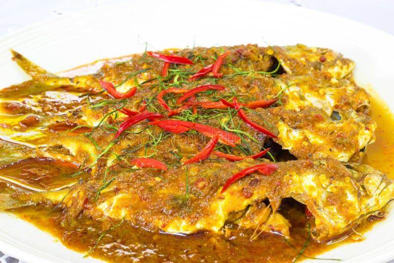 Makrele in getrocknetem rotem Curry stockfoto