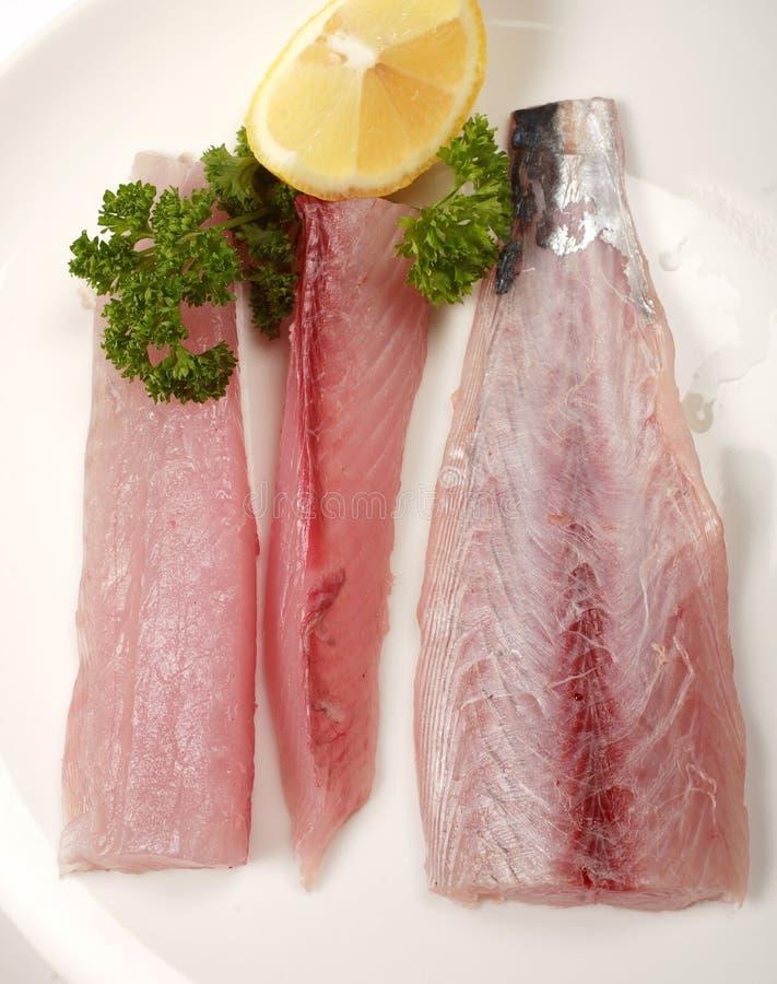 Makreleverkleidungen von oben stockfoto
