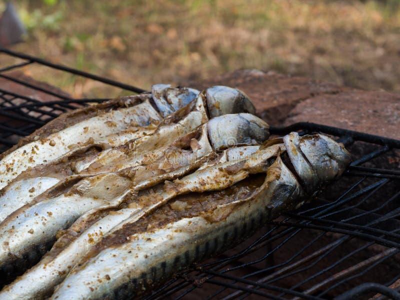 Makreli ryba piec na grillu na ogieniu przy ogrodowym przyjęciem fotografia stock