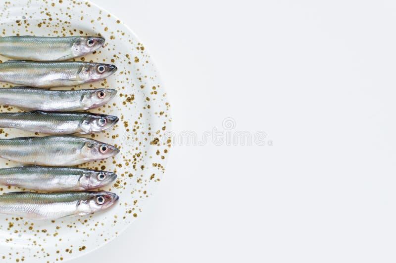 makreli surowy p??kowy Bia?y t?o, odg?rny widok, przestrze? dla teksta fotografia stock
