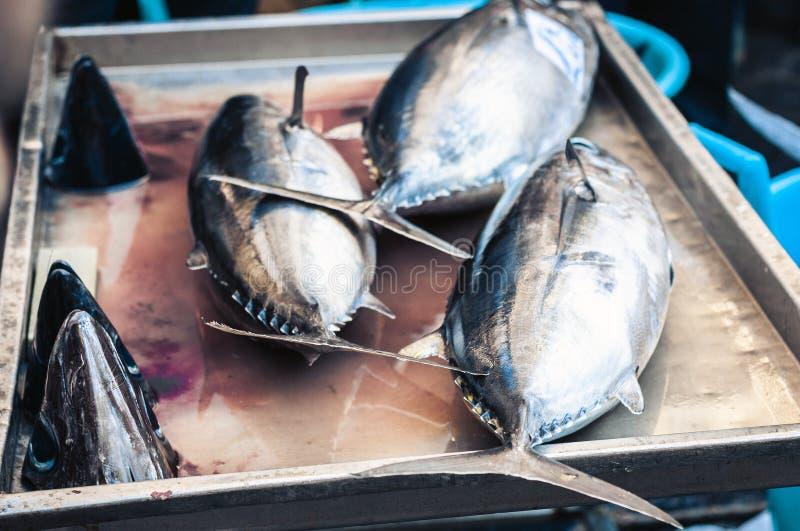 Makrill för ny fisk som är till salu i fiskmarknaden Pescheria av Catania, Sicilien, Italien fotografering för bildbyråer