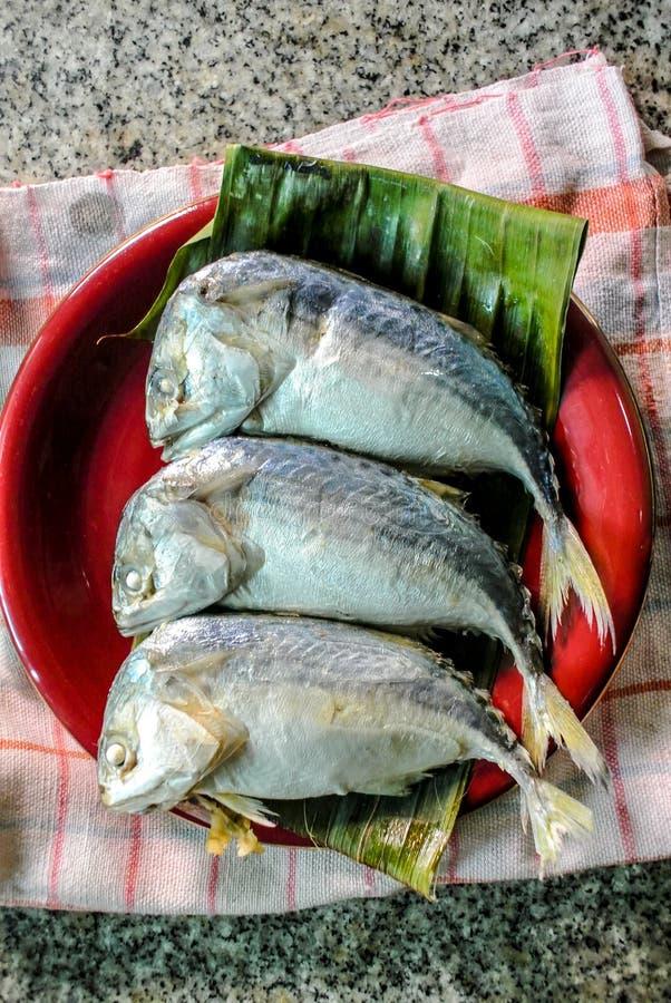 Makrillfisk i den röda maträtten för att laga mat arkivbild