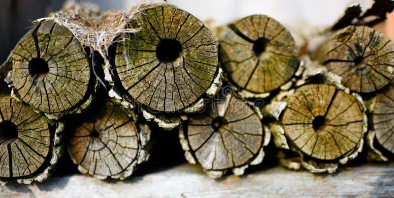 Makro av staplat trä, journal arkivbilder