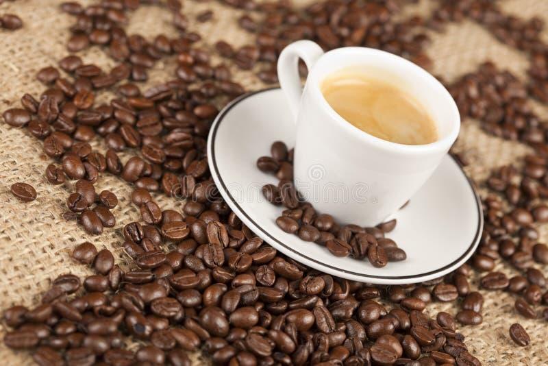 Makro del primer de la taza del café express con los granos de café fotografía de archivo