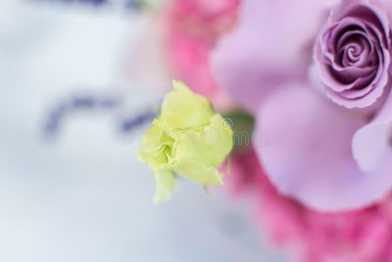 Makro- delikatny świeży fiołek róży kwiat Ślubna świeżych kwiatów dekoracja zdjęcia stock