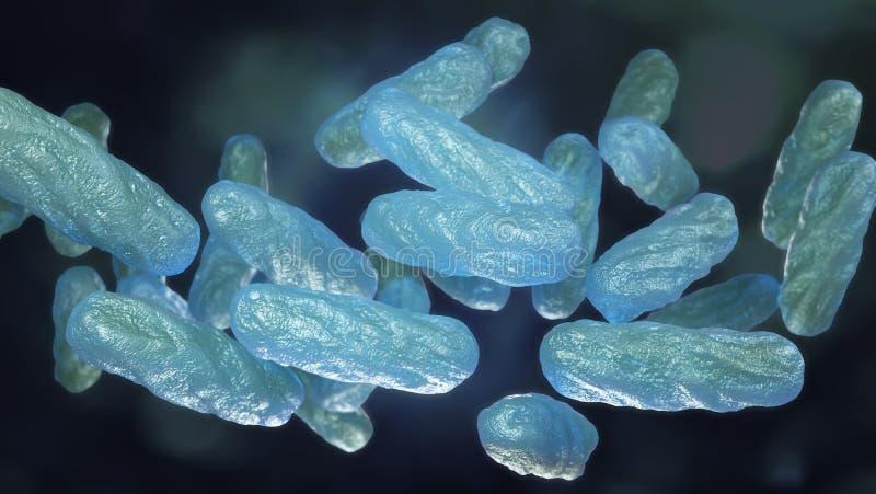 Makro der bakteriellen Infektion lizenzfreie abbildung