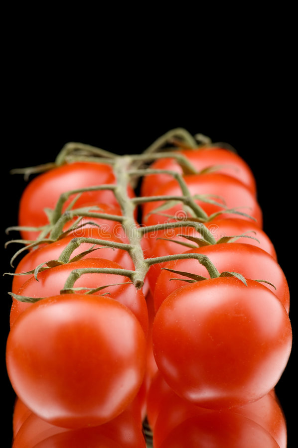 makro- dojrzały pomidor obraz royalty free