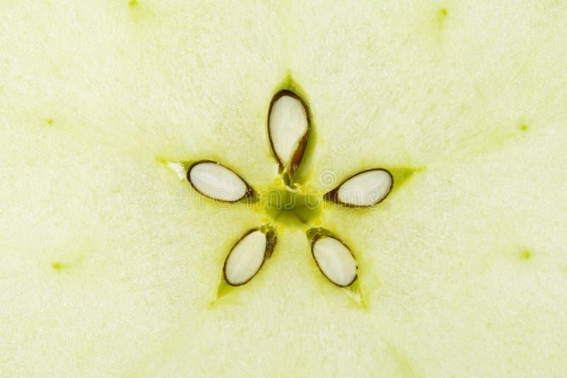 makro för green för äpplesamlingsmat royaltyfria bilder