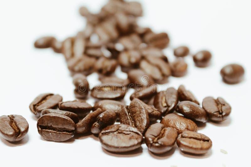 Makro för kaffebönor arkivbild