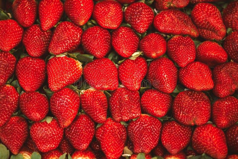 Makro- fotografia mnóstwo truskawki w pełnej ramie zdjęcie stock