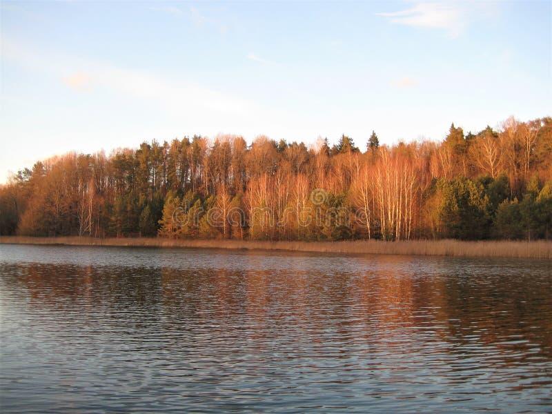 Makro- fotografia z dekoracyjnym tłem światło słoneczne wieczór piękny krajobraz na wiejskim naturalnym jeziorze przy zmierzchem fotografia royalty free
