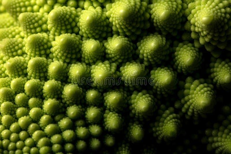 MAKRO- frischen romanesco Kohls Gemüse, selektiver Fokus lizenzfreies stockfoto