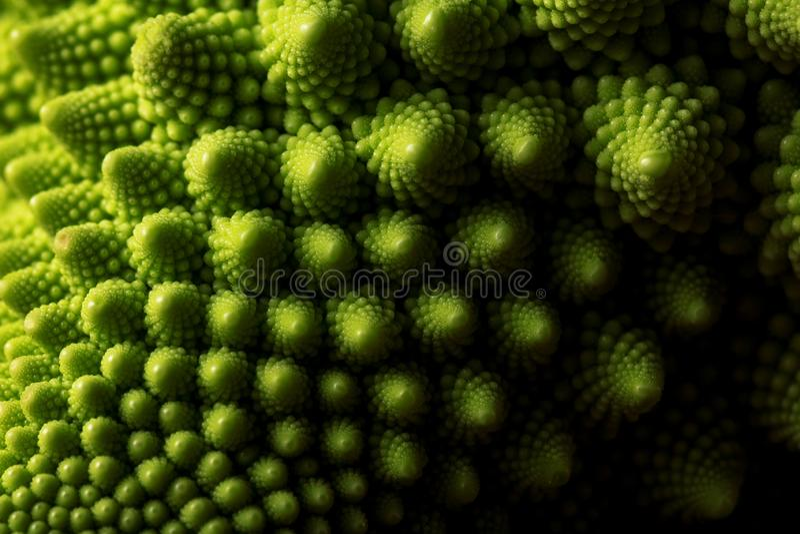 MAKRO- frischen romanesco Kohls Gemüse, selektiver Fokus stockfotografie