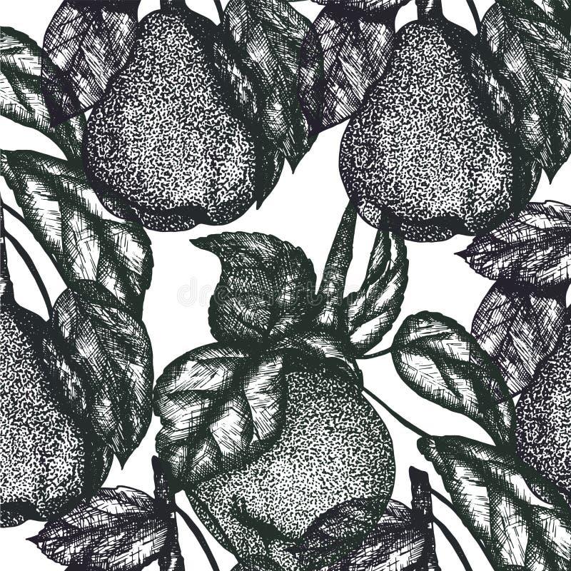 Makro- Jabłczany Owocowy bezszwowy wzór royalty ilustracja